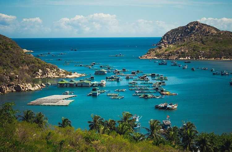 Du lịch Vĩnh Hy Ninh Thuận, hướng dẫn tham quan Vịnh chi tiết nhất
