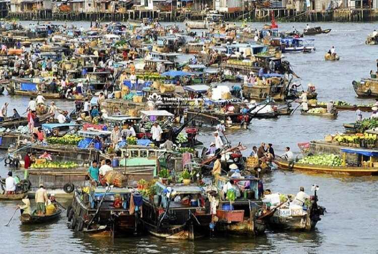 Chợ nổi Cà Mau, điểm du lịch mang đậm đặc trưng của miền sông nước