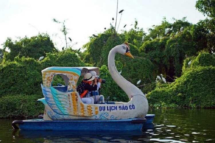 Vui chơi đạp vịt trên sông cùng tình nhân