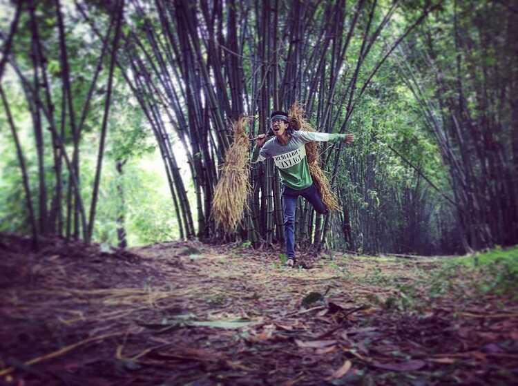 Làng Tre Phú An khu sinh thái check in sống ảo cực chất