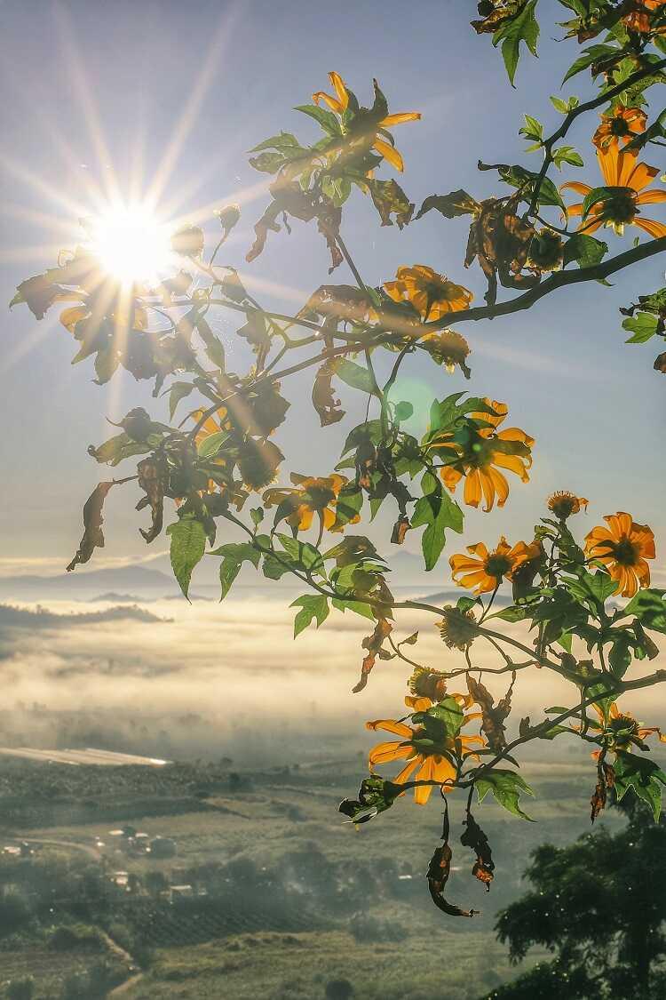 Núi lửa Chư Đăng Ya
